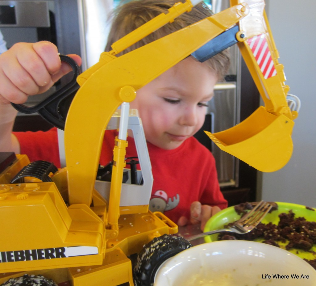 Tas says to use an excavator to sprinkle hemp hearts on your cake--it's yummy!