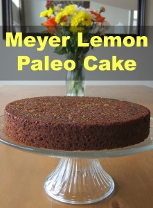 So good you don't have to be on a paleo diet to enjoy it! Meyer Lemon Paleo Cake.
