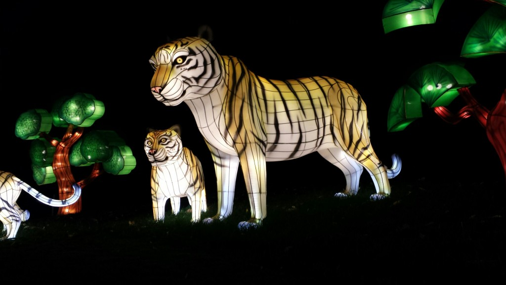 Tiger_Lanterns_Calgary_Zoo_ILLUMINASIA