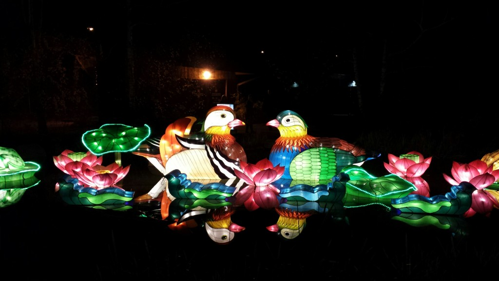 One of my favourite lantern installations is out on the water--the reflection added to the magic.