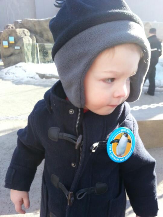 Max_Hamel_Penguin_Walk_LWWA